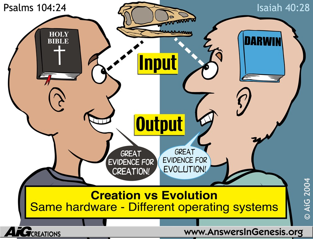 differences between darwinism and creationism